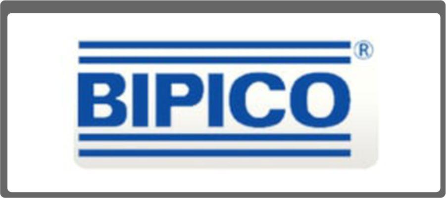 BIPICO Logo
